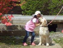 愛犬と遊ぶ子供