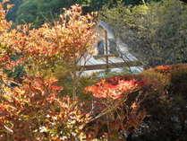 秋のコテージ