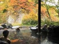 【無料送迎バス付き】紅葉の秋山郷~越後湯沢駅の送迎バスが無料!お得に絶景露天風呂と秘境の味覚を堪能