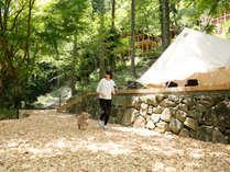 愛犬とドッグランや山道を散策、テラスでのんびりティータイム。里山の自然で愛犬と過ごす休日を。