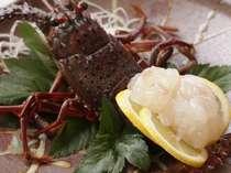 伊勢海老の姿造り料理例