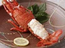 伊勢海老のボイル料理例