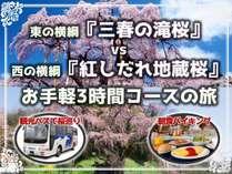 東の横綱『三春の滝桜』vs西の横綱『紅しだれ地蔵桜』お手軽3時間バス観光プラン(朝食付)