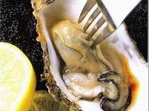 【浦村産カキ尽くし】旬の牡蠣をいろんな食べ方で♪