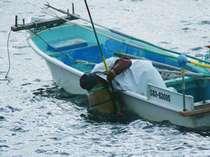 *水附きという伝統的漁法で海底の魚や貝を捕獲♪