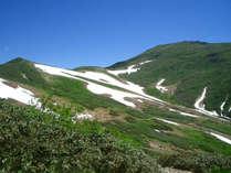 *【月山・山開き】山開きには、毎年多くのお客様で賑わいます