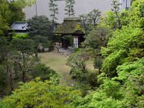 何百年も前から手入れされてきたふなやの日本庭園。【初夏】