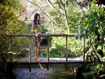 1500坪のふなや庭園を流れる小川が癒しの空間を演出します。