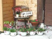 こんにちは、当館の玄関にはたくさんの寄せ植えが並び、お越しのお客様の目を楽しませています。