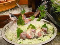 *【和風海鮮バイキング】「磯魚」 お造りは獲れたて新鮮な海の幸