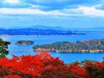 【西行戻しの松公園(紅葉)】青い海を背景に真っ赤な紅葉とのコントラスト