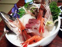 新鮮なお刺身。漁師の宿ならではのお料理。