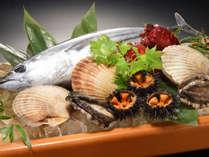 三陸直送の新鮮な魚貝類が思う存分楽します!