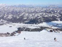 **【北アルプスと白馬村のスキー場】レベルに合わせて楽しめる豊富なコースとパウダースノーが人気。