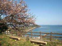 青佐山展望台(車で15分)からの晴れの日の景色。「浅口ブルー」が鮮やかな、空と海が広がります。