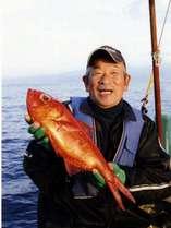 稲取の漁師が水揚げする金目鯛は、最高に美味しいです!
