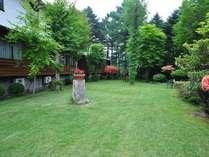 大きなモミの木に囲まれた中庭では、野鳥のさえずりと共に四季折々の風景が楽しめる。