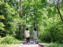 施設の周辺には遊歩道が整備された森があるので気軽に森林浴♪