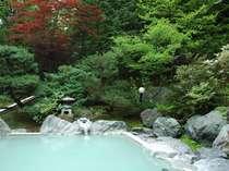 女性露天「美肌の湯」。周辺の木々、広がる空、そして鳥たちの囀り。癒しの空間です。