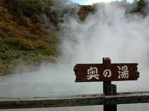 【奥の湯】大湯沼のすぐそばにある奥の湯もとても幻想的。