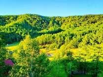 *お部屋からの景色は自然豊かな八千穂高原が見渡せます。