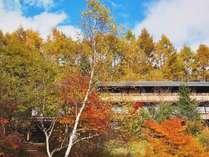 *[風景]当館の周りは秋の色で包まれます。