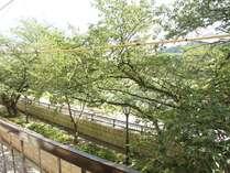 足羽山・桜並木の足羽川に面した当館でごゆっくりとお寛ぎください。