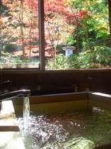 紅葉を見ながらほっこりと温泉に・・・