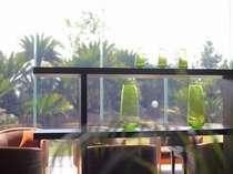 【佳松苑本館】庭園に面したロビー。窓の外に小鳥のさえずりが聞こえてきそう。