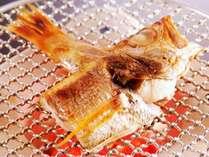 脂ののった高級魚のどぐろはシンプル且つ一番美味しい食べ方でどうぞ[秋一例]