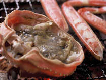 焼きガニは、ゆでガニのカニ味噌やバーニャ・カウダをつけて食べると美味しさ倍増!