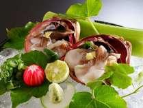 食通に人気の丹後のとり貝は、ふっくら大きな身が特徴。造りはもちろん、炙りも絶品!
