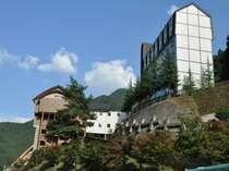 祖谷渓温泉 ホテル秘境の湯 (徳島県)