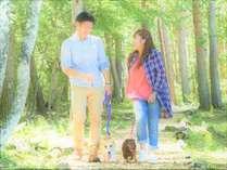 【散歩道】敷地内の白樺林の散歩道。蓼科の緑のこもれびと爽やかな風をたのしんで