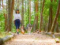 【散歩道】敷地内の散歩道。秋は涼しい風と自然の草花のじゅうたんが心地よく、わんちゃんも大喜び!