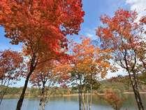【1泊朝食付】秋の高原をたっぷり満喫♪