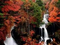 竜頭の滝と紅葉