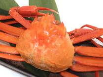 *【紅ズワイガニ】国産のベニズワイを1杯まるごとご提供!みそまで旨味が詰まっています。