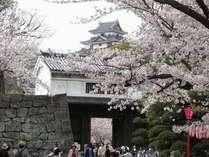 春の和歌山城