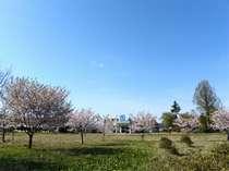 *大自然に囲まれた温泉宿。秋田の郷土料理とあったかい人情でおもてなし♪