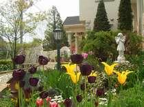 春から秋まで 次々に咲く花をお楽しみに下さい