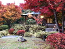 秋色を帯びてきた空を眺めながら庭園でごゆっくりお寛ぎください。