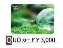 Quoカード3000円分をお渡しします。