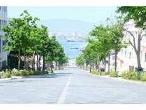 チャーミーグリーンの坂とも呼ばれる「八幡坂」。映画やCMの撮影で使われる坂です。