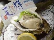 天然岩牡蠣「夏輝」が解禁となりました!6月~8月中旬頃まで焼いてご提供致します♪