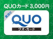 【クオカード3,000円】素泊り(食事なし)プラン