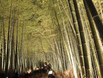 【12/8~17限定★】嵐山花灯路を満喫♪ぬくぬく特典付