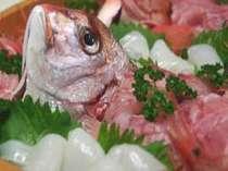 獲れとれ活度を楽しむ海鮮料理(旬の姿盛り例)