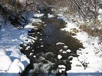 近隣の清流「五百川」の、雪化粧の頃です。水墨画の五百川もいいものです。