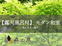 【露天風呂付】モダン和室(38.3平米+露天)